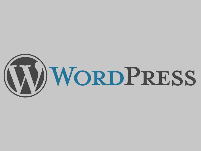 Top 10 pluginów doWordPressa