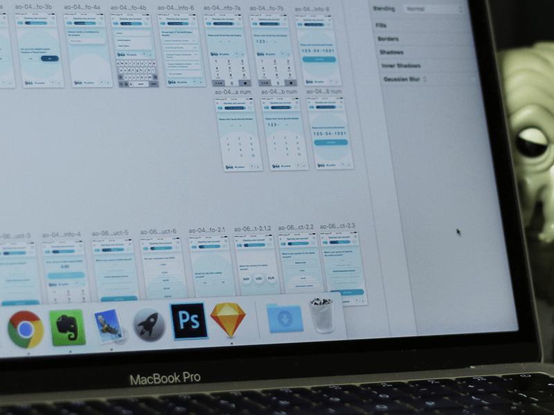 program do projektowania stron